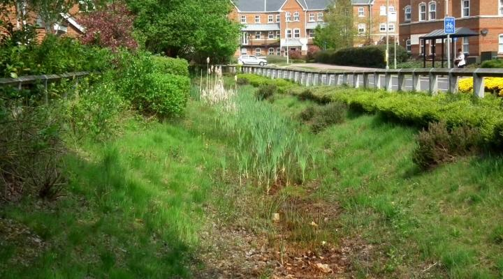 A swale, part of a sustainable drainage system (SuDS) in Elvetham, UK